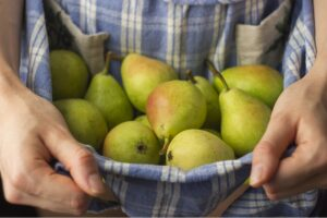 Груша Лимонадная Осенняя в Арамилье